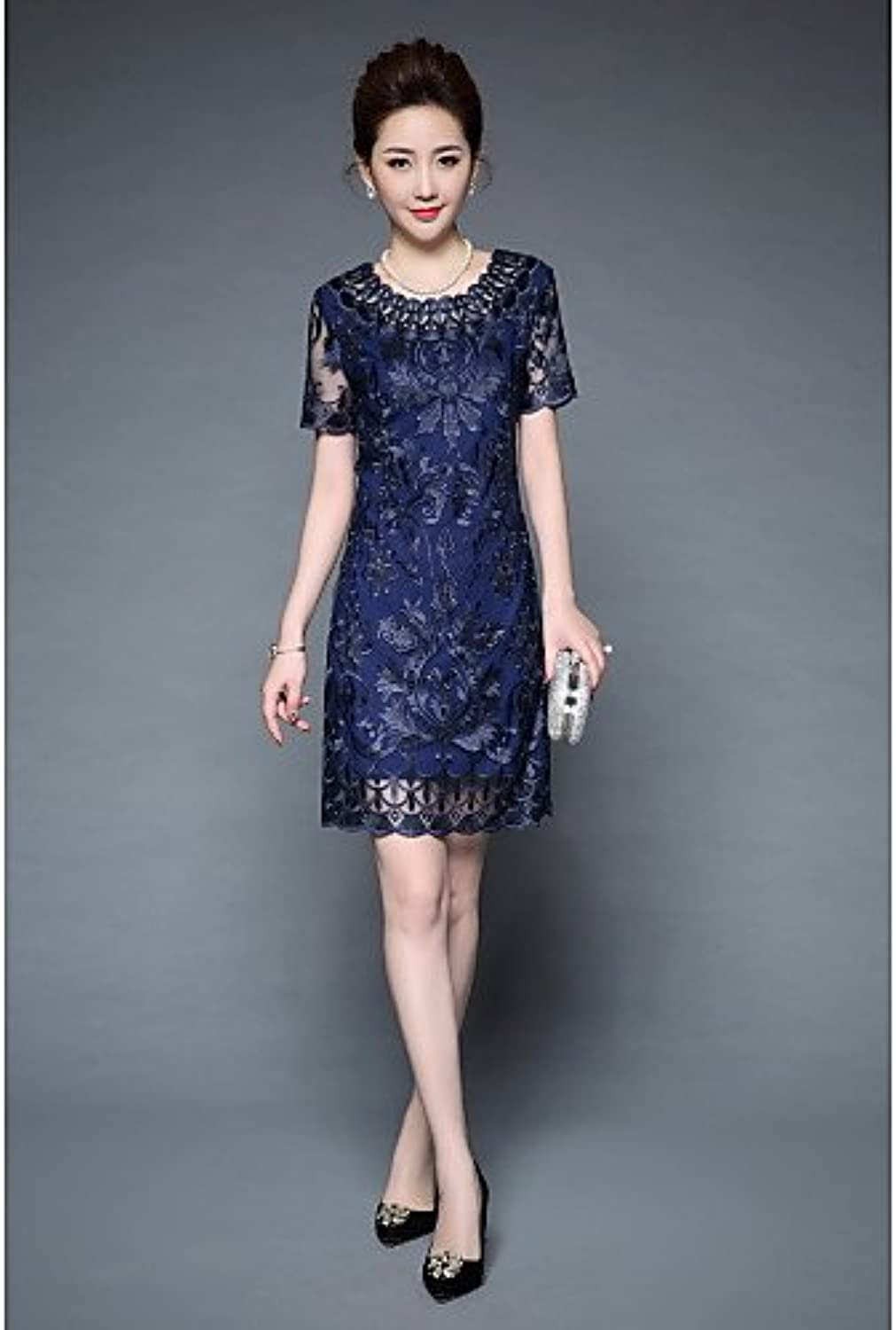 Women's Plus Size Sheath Dress  Embroidered