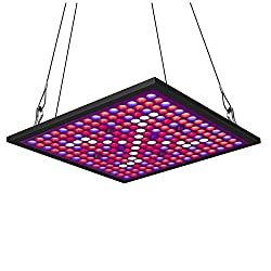 Small Grow Lights [Reviews of Bulbs, LED Light Strips, and Small Lamps]