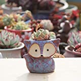 WPQBS Maceta,MiniMaceta de cerámicatraviesa de Dibujos AnimadosMaceta suculenta Maceta Creativa gres Transpirable decoración de la Oficina en el hogar, púrpura