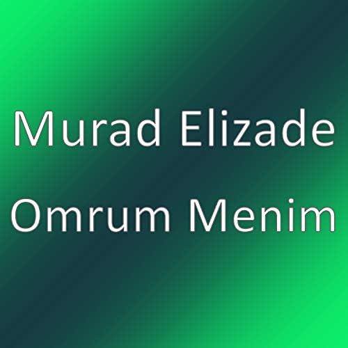 Murad Elizade