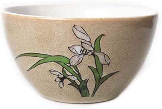 wsetrtg Hand Painted Miami Mall underglaze Ranking TOP11 Ceramic Noodle Ri 4.75 inch Bowl