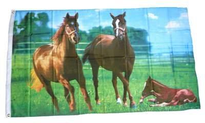 Fahne / Flagge Wilde Pferde NEU 90 x 150 cm Flaggen