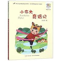 小布头奇遇记(精选注音书)/百年百部中国儿童文学经典书系