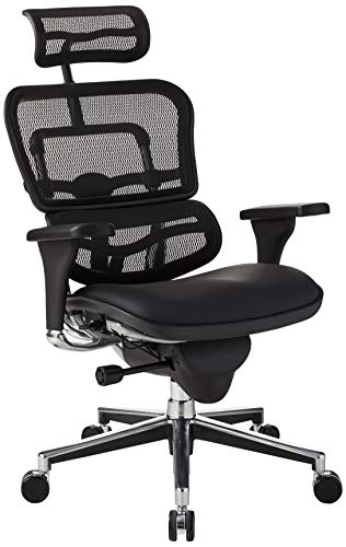 Eurotech Seating Ergohuman High Leather Seat/Mesh Back Swivel Chair, Black