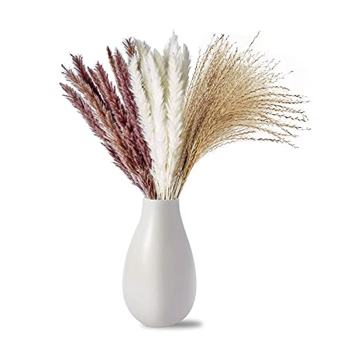 Ledeak 60 Piezas Pampas Secas, Naturales Grass Flores Hierba Secas Phragmites Tallos...