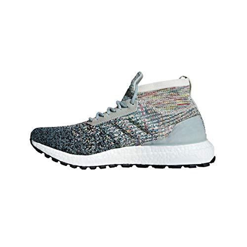 adidas Herren Ultraboost All Terrain LTD Laufschuhe, Grau Ashsil/Carbon/Cblack, 42 EU