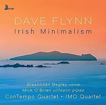 Dave Flynn: Irish Minimalism