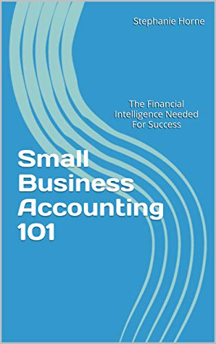 Small Business Accounting 101: The Financial Intelligence Needed For Success (English Edition)