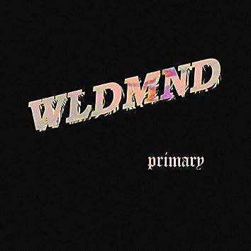 Primary (feat. Jayden)