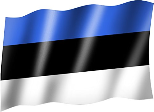 Flagge/Fahne ESTLAND Staatsflagge/Landesflagge/Hissflagge mit Ösen 150x90 cm, sehr gute Qualität