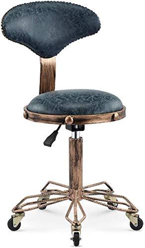 DNNAL Salón de Silla Taburete, Elevación Ajustable balanceo Taburete con Respaldo para peluquería Peluquero Ministerio del Interior Tatuaje,Azul