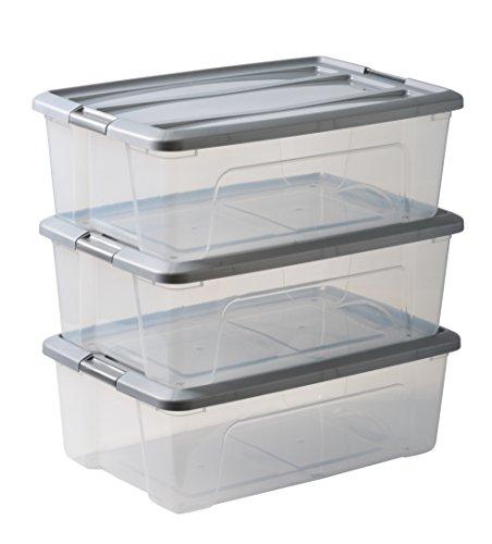 IRIS OHYAMA stapelbare Aufbewahrungsboxen mit Klickverschluss, Plastik, transparent, Grau Deckel, 30 L, 3er Set