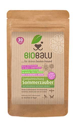 Biobalu Sommerzauber | Bunte Blumenwiese Samen | Über 40 Sommerblumen zum Schneiden & Pflücken | Sommerblumenmischung | Schnittblumen Samen | Blühwiese mehrjährig & bienenfreundlich | Blumensamen 30 g