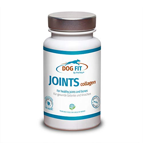 DOG FIT by PreThis® Joints Collagen | Kollagen Plus Kalzium für Hunde Gelenke, Knorpel, Knochen & Bindegewebe | Gelenknahrung | 100% Natur