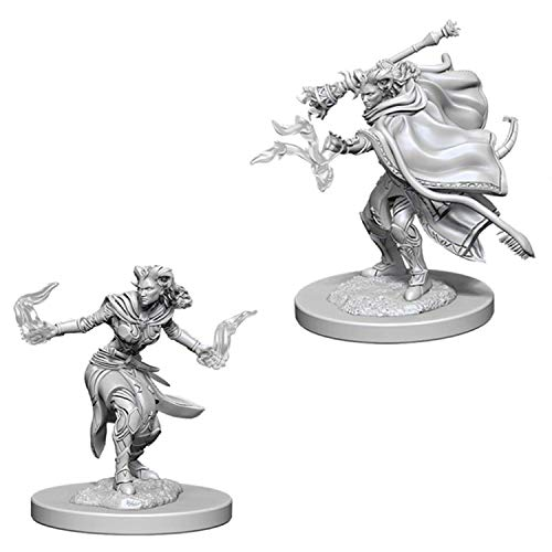 Dungeons & Dragons Nolzur's Marvelous Unpainted Minis: Femal Tiefling Warlock