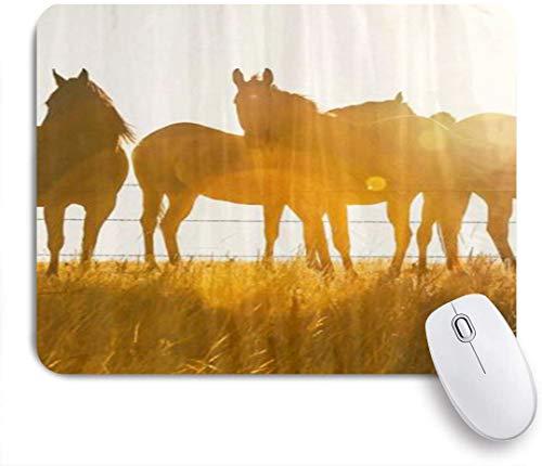 Dekoratives Gaming-Mauspad,Equine Glow Horse stehend an einem Zaun im Sonnenuntergang,Bürocomputer-Mausmatte mit rutschfester Gummibasis