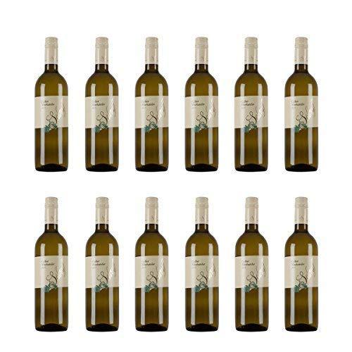 Vorteilspaket Osliper Gelber Muskateller Weißwein Österreich 2019 trocken (12x 0.75 l)