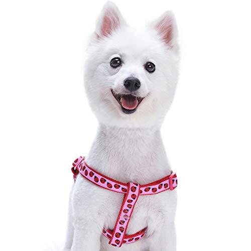 Blueberry Pet Step-In Geschirre für Hunde Marienkäfer Designer Hundegeschirr mit Zugentlastung, Verstellbar, Nylon 42-54cm Brust, Passender Hundehalsband & Hundeleinen erhältlich Separate