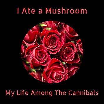 I Ate a Mushroom