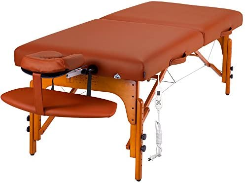 Top 10 Best professional massage table Reviews