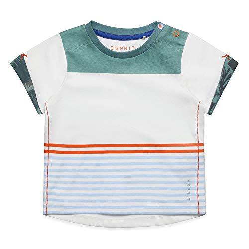 ESPRIT T-Shirt SS Bambino