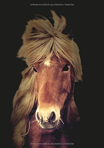 Notizbuch DIN A5 Liniert: 110 Seiten | Ideal als Journal, Tagebuch, Schulheft, Collegeblock, Heft für Notizen | Softcover Schönheit Pferd
