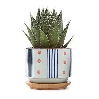 T4U 3 Inch Ceramic japanese Style Serial No.5 succulent Plant Pot/Cactus Plant Pot Flower Pot/Container/Planter White