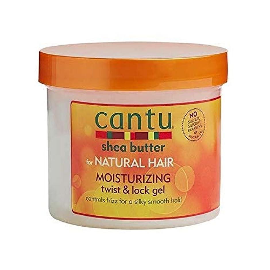 エミュレートする湿度範囲[Cantu ] 自然な髪のツイスト&ロックゲル370グラムのためのカントゥ - Cantu for Natural Hair Twist & Lock Gel 370g [並行輸入品]