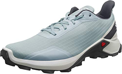Salomon Alphacross, Zapatillas de Trail Running Hombre, Gris Lead White India Ink, 42 2/3 EU