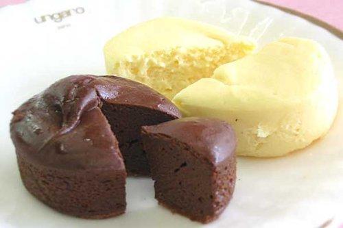 濃厚 ミニケーキ 生チョコ焼き (ギフト用・10個入り )