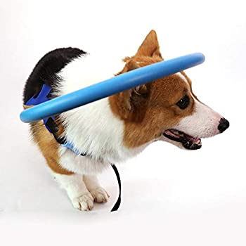 Best dog halo vest Reviews