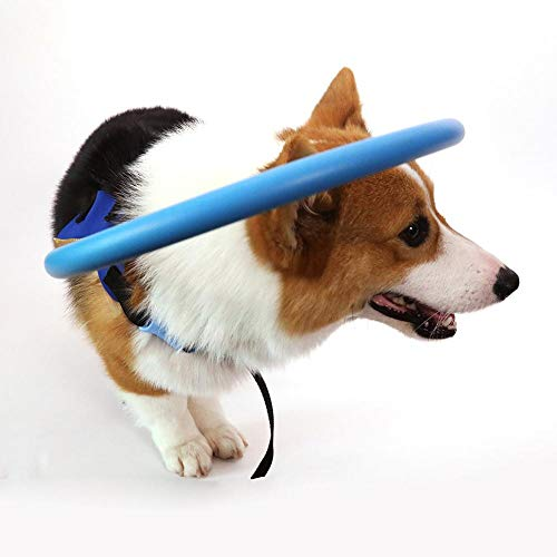 Protective Dog Harness