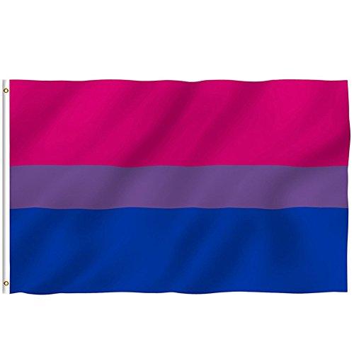 3x5 Ft Bi Pride Flag Bisexual Flag Banner Gay Lesbian LGBT Rainbow Festival Pennant