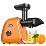 Fezen Cold Press Juicer, Slow Masticating Juicer Machines Up to 95% Juice Yield, Quiet Motor & Reverse Function Electric Juicer Extractor, BPA-Free, Easy Clean with Brush for Vegetable and Fruit