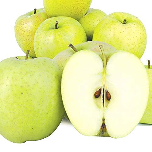 国華園 食品 青森産 ご家庭用王林 5�s1箱 りんご