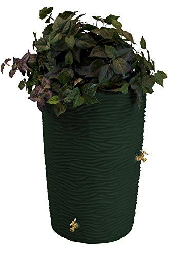 Good Ideas Imp-L50-GRN Impressions Palm Rain Barrel, 50 Gallon, Green