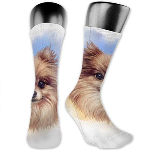Calcetines Leila Marcus para hombres y mujeres son cómodos, ligeros y sudorosos, divertidos cachorros de Pomerania en calcetines medianos y largos.