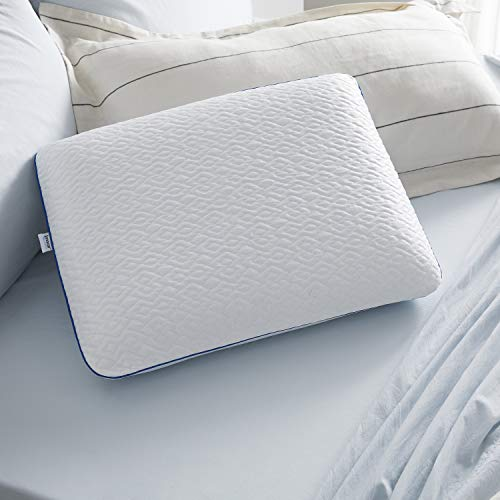 Sleep Innovations Forever Cool Gel Memory Foam Pillow, Standard, Made in The USA