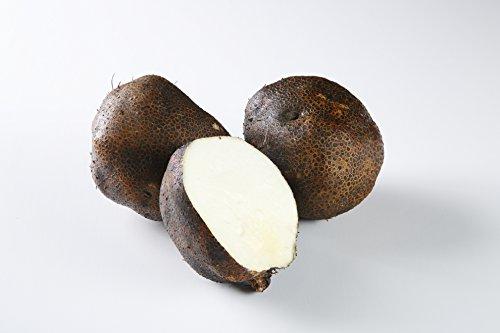 ヤマノイモ 栽培時 農薬 化学肥料 不使用 大和万葉の里 堤さんの 山の芋 2~3個約1.0kg 奈良 産地直送