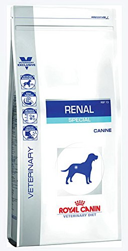 ROYAL CANIN Renal Special Canine, 1er Pack (1 x 10 kg)