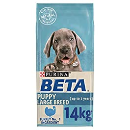 BETA Puppy Large Breed with Turkey