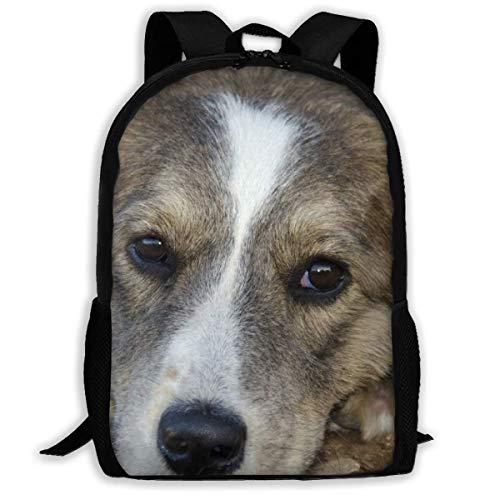 Student Bag, hond dier mens beste vriend reistas, nuttige schooltassen voor fitness outdoor-reizen, 43x28x16cm