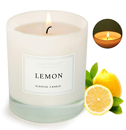 Lemon Scented Jar Candle for Home 8.8oz Relaxing Soy Wax Candles for Men and Women Aromatherapy 45H Long Lasting