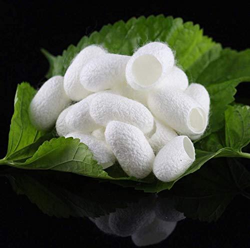 VPlus Lot de 100 boules de soie, blanchissantes et exfoliantes en soie naturelle, soin du visage, 100 % naturel