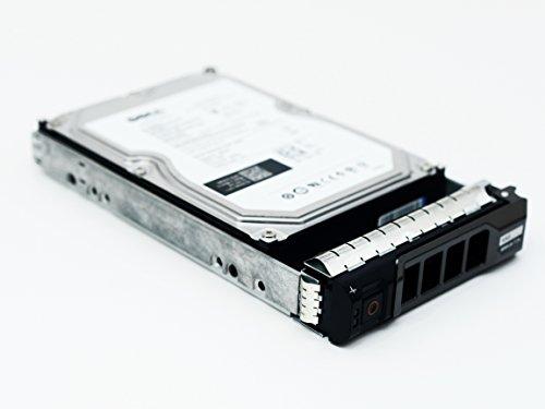 DELL Compatible 2TB, 7200RPM (3,5Pulgadas, SATA 6GB/s de Disco Duro Enterprise con Genuine DELL Caddy para servidores PowerEdge y Matrices
