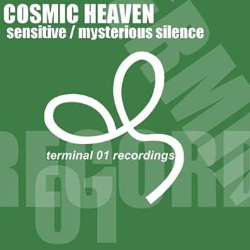Sensitive / Mysterious Silence