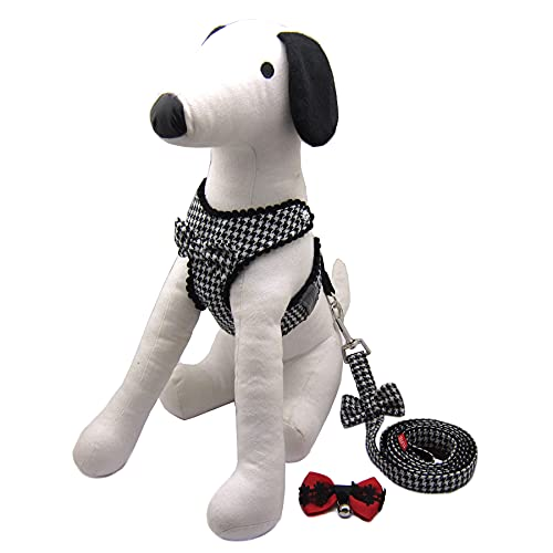 Alfie Pet - Shayne Step-in Harness and Leash Set - Color: Black, Size: XS