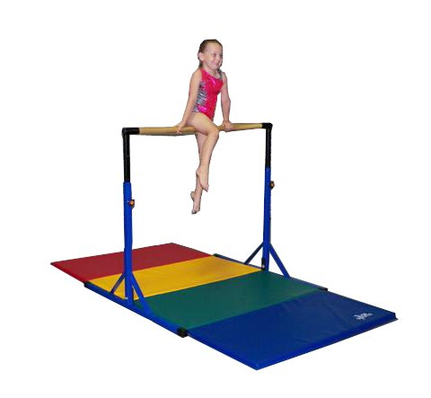 Team Sports Best Choice -Gymnastics Pro-Deluxe High Bar...