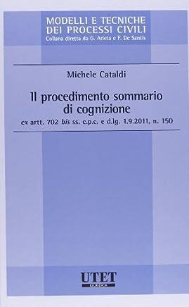 Il procedimento sommario di cognizione ex artt. 702 bis ss. c.p.c. e d.lg. 1,9,2011, n. 150