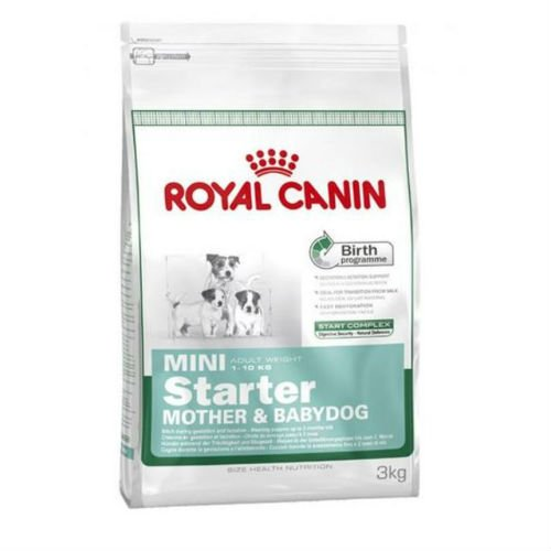 Royal Canin Mini Starter Madre & Babydog Dogs Alimento 3 kg